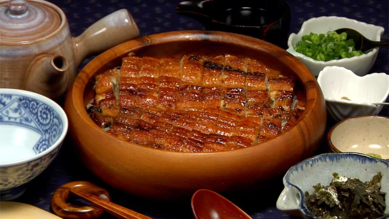 Image result for unagi