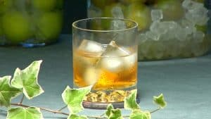 Umeshu and Ume Syrup Recipe (Homemade Plum Wine and Plum Syrup)