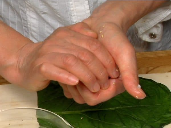 Wet your hands with the salt water and shape the rice into a cylinder.